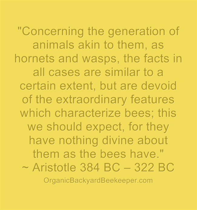 """Concerning the generation of animals akin to them, as hornets and wasps, the facts in all cases are similar to a certain extent, but are devoid of the extraordinary features which characterize bees; this we should expect, for they have nothing divine about them as the bees have.""  ~ Aristotle 384 BC – 322 BC"