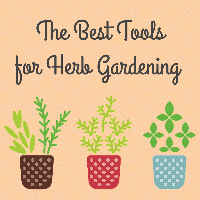 Herb Gardening For Beginners: The Best Tools