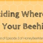 3: Where to Place a Backyard Beehive for Good Results [HBM Podcast Transcript]