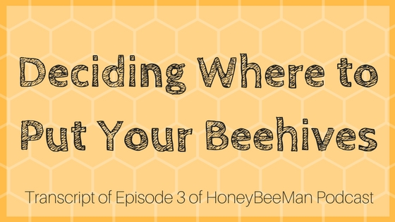 Where to put backyard beehives for the best results [title card for podcast transcript]