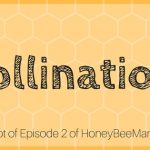 2:  What is the Biggest Value of Honeybees? Pollination! [HBM Podcast Transcript]