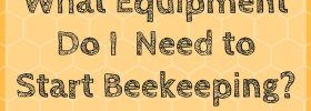 [title card] what equipment is needed to start beekeeping my own backyard hives