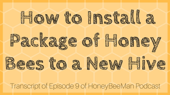 How to Install a Package of Bees to a New Hive - HoneyBeeMan Transcript Episode 9