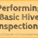 10: Honeybee Hive Inspections [HBM Podcast Transcript]