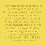 """""""Concerning the generation of animals akin to them, as hornets and wasps, the facts in all cases are similar to a certain extent, but are devoid of the extraordinary features which characterize bees; this we should expect, for they have nothing divine about them as the bees have."""" ~ Aristotle 384 BC – 322 BC"""