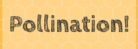 Episode 2 Transcript Honeybee Pollination title card